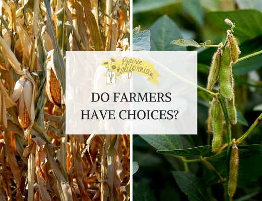 Do Farmers Have Choices-
