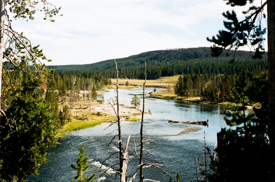 Yellowstone Blog-1