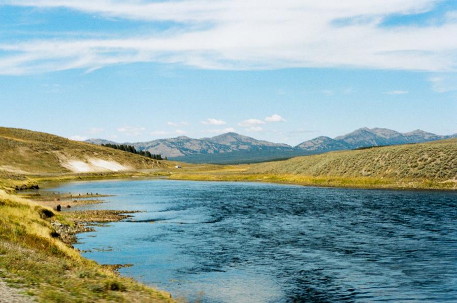 Harley Honeymoon: Yellowstone National Park
