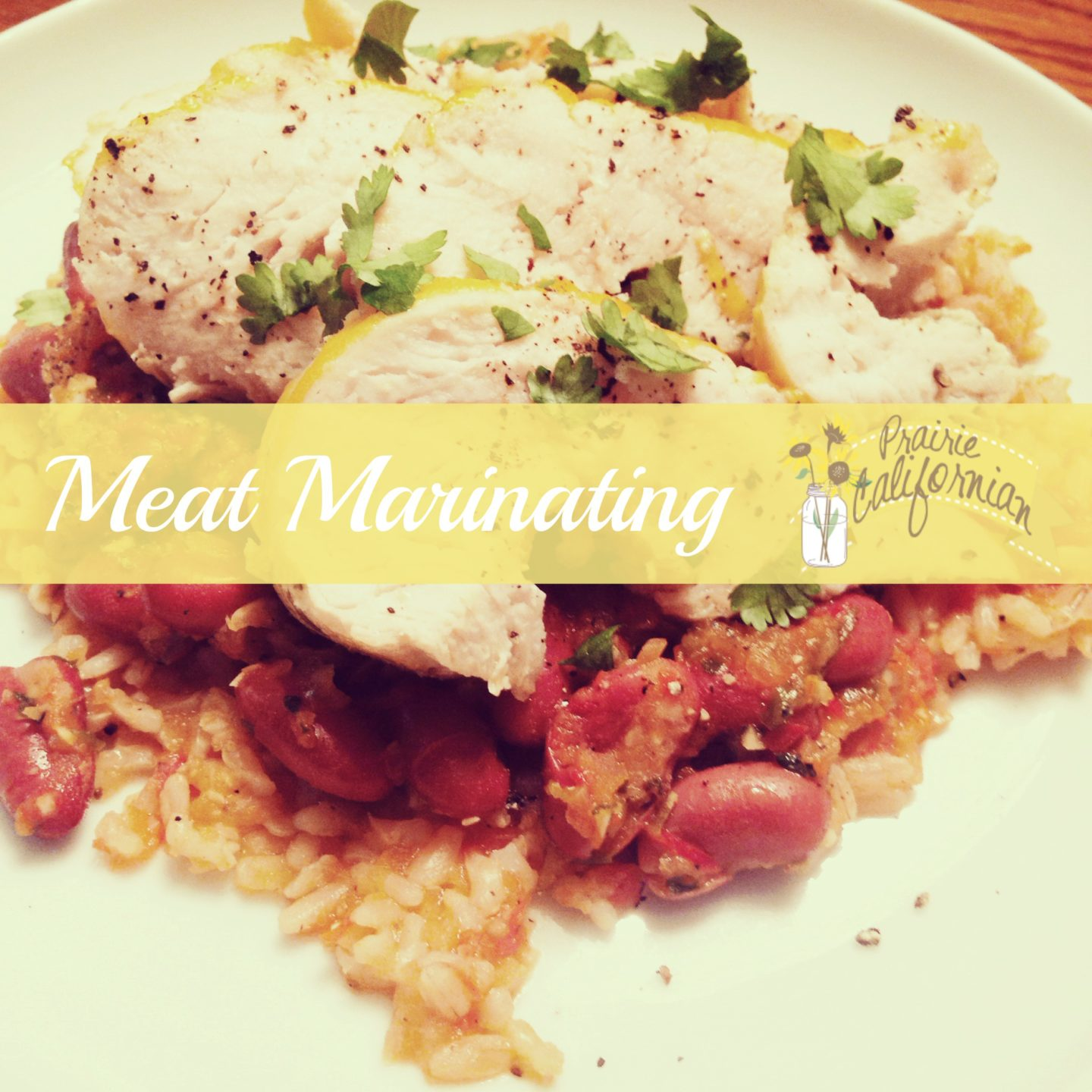 Meat Marinating 101 with Recipes