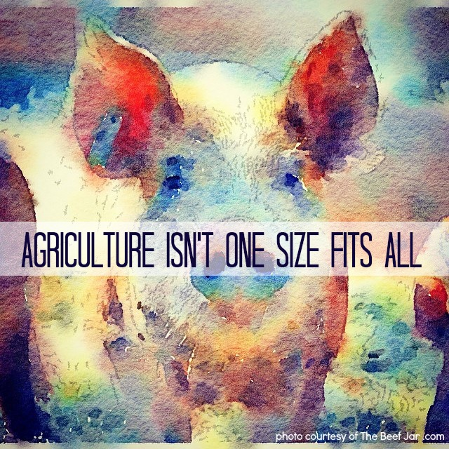 Agriculture Isn't One Size Fits All