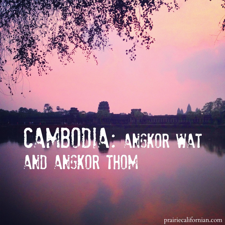 Cambodia Angkor Wat  Prairie Californian .jpg