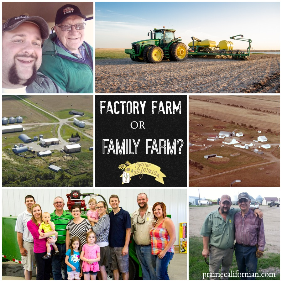Factory Farm or Family Farm.jpg