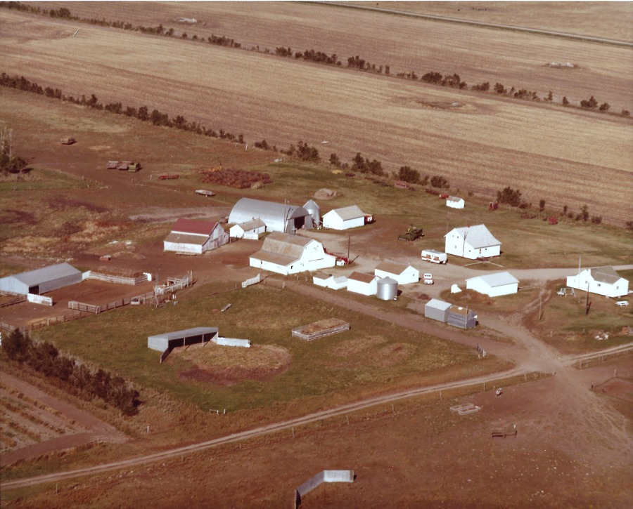 Farm Picture1.jpg