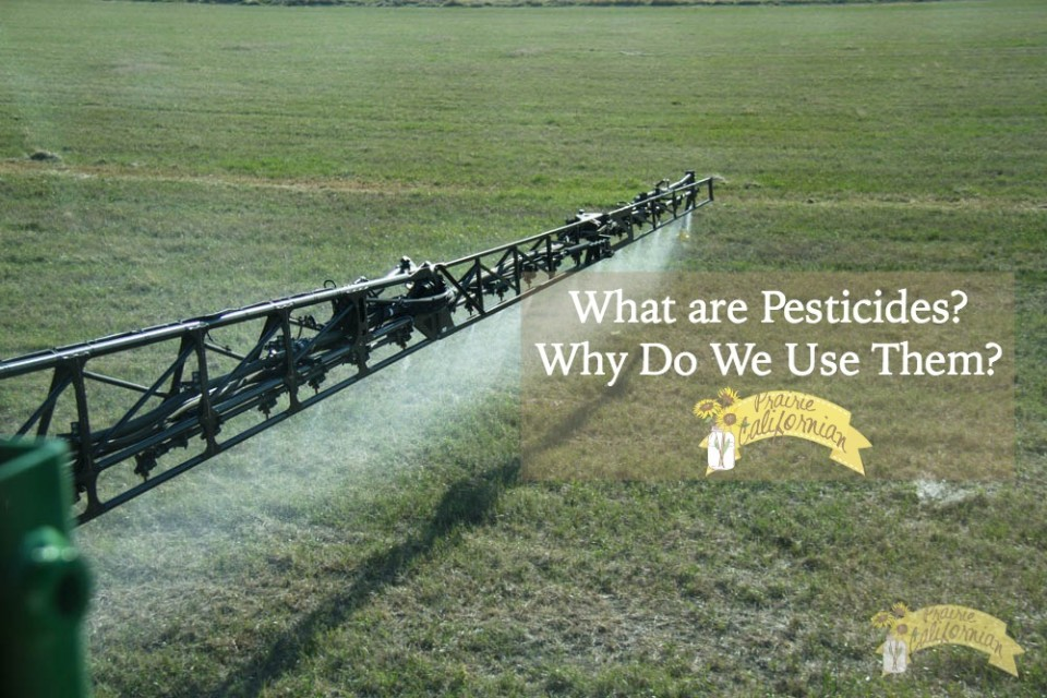 What Are Pesticides - Prairie Californian.jpg