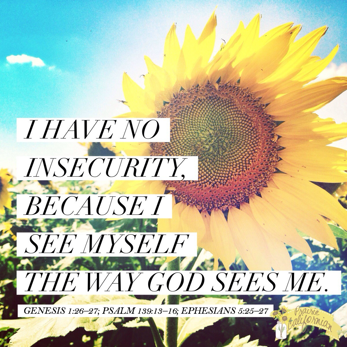 Faith Friday: I Have No Insecurity