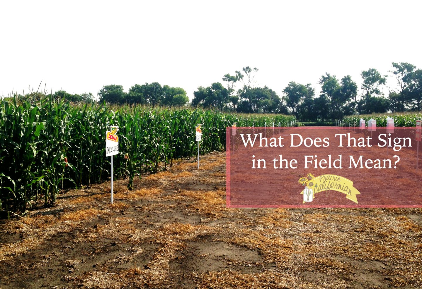 What Does That Sign in the Field Mean?