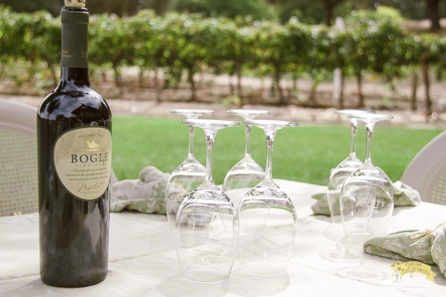 Bogle Vineyards-2