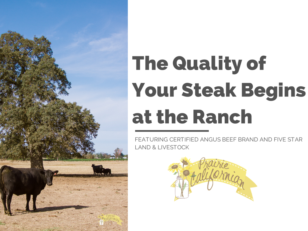 The Quality of Your Steak Begins on the Ranch