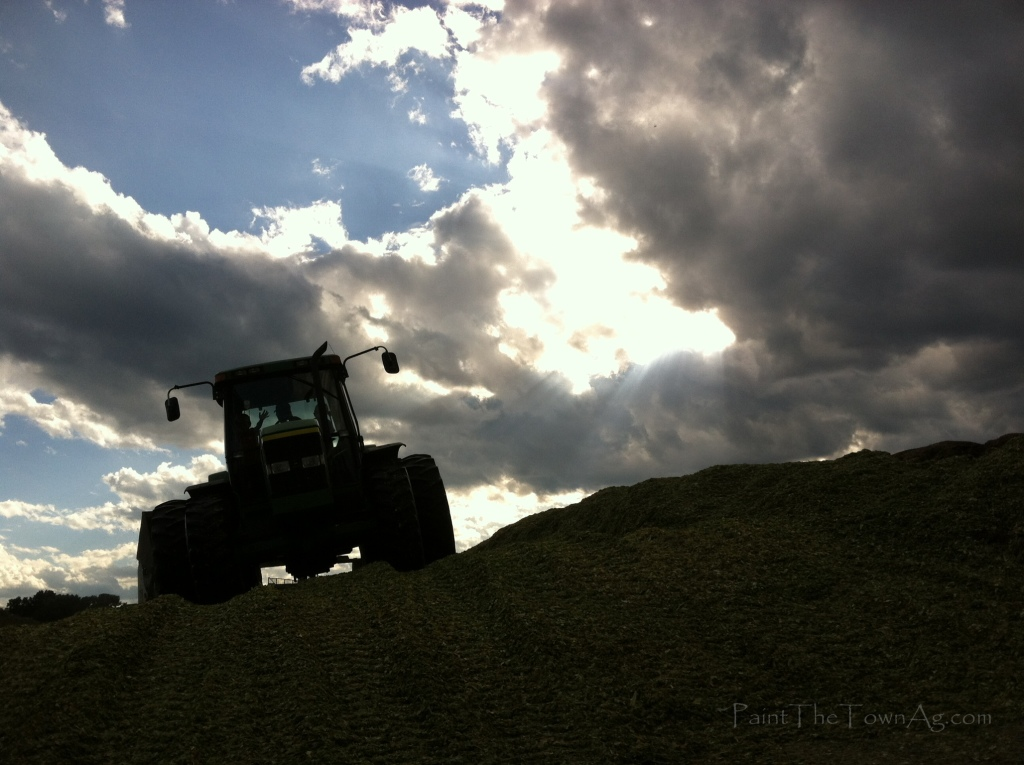 Lauren Arbogast 3 - Tractor on Silage_PaintTheTownAg