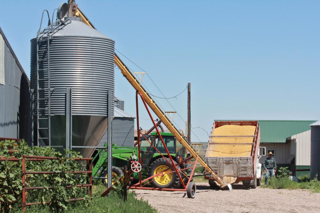 Maude - barleyharvest