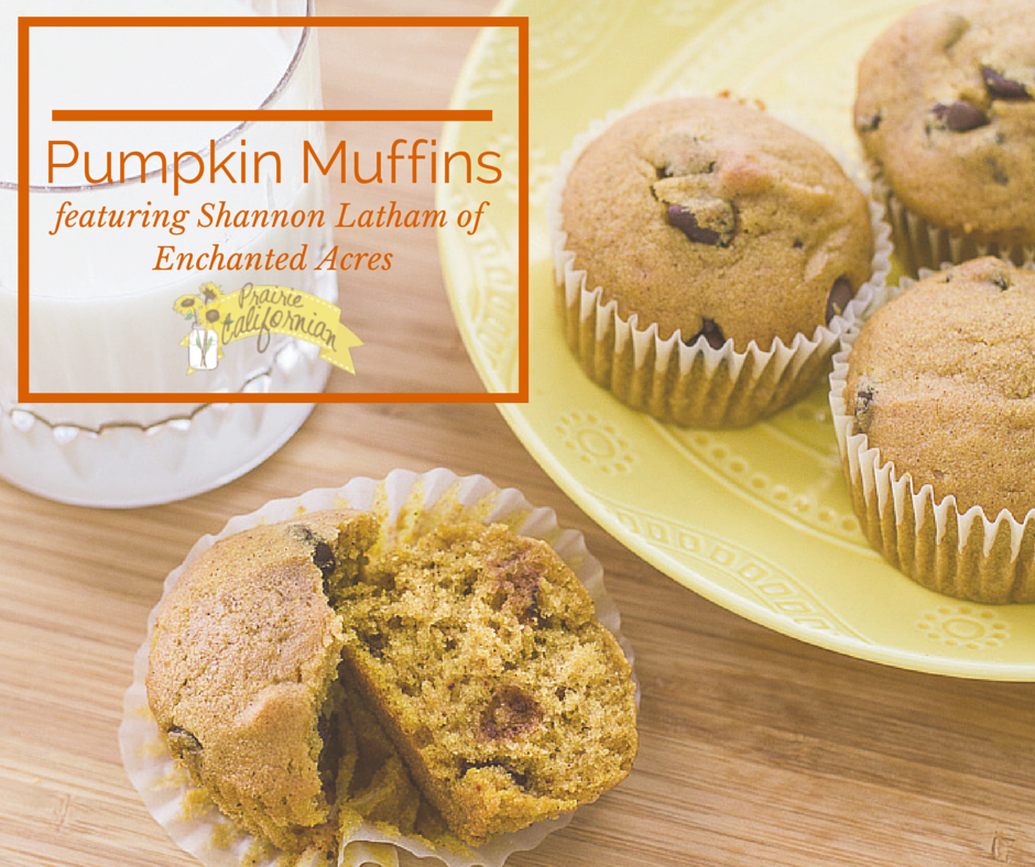 Pumpkin Muffins featuring Shannon Latham of Enchanted Acres