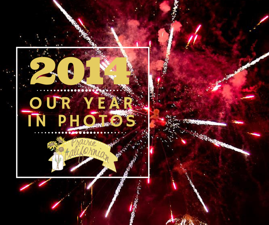 2014. Our Year in Photos