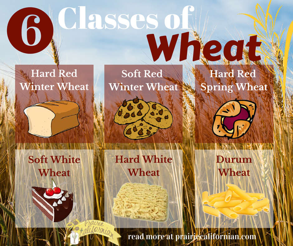 Classes of Wheat