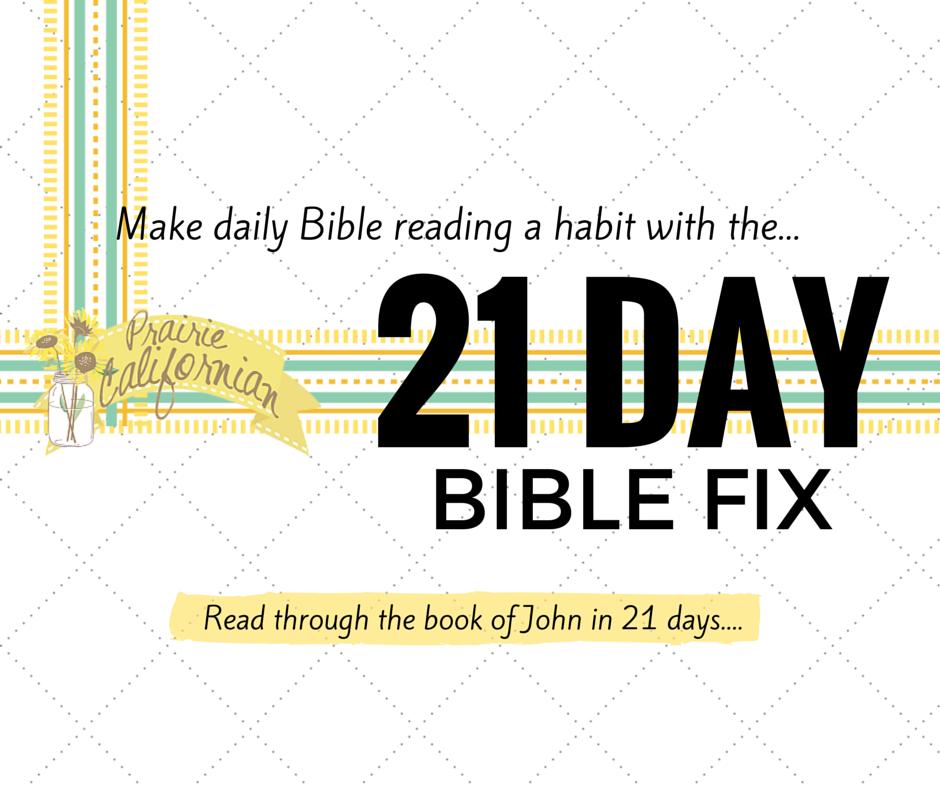 21 Day Bible Fix