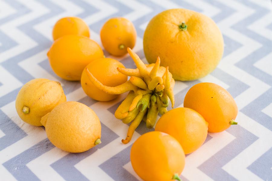 Citrus - Prairie Californian-3