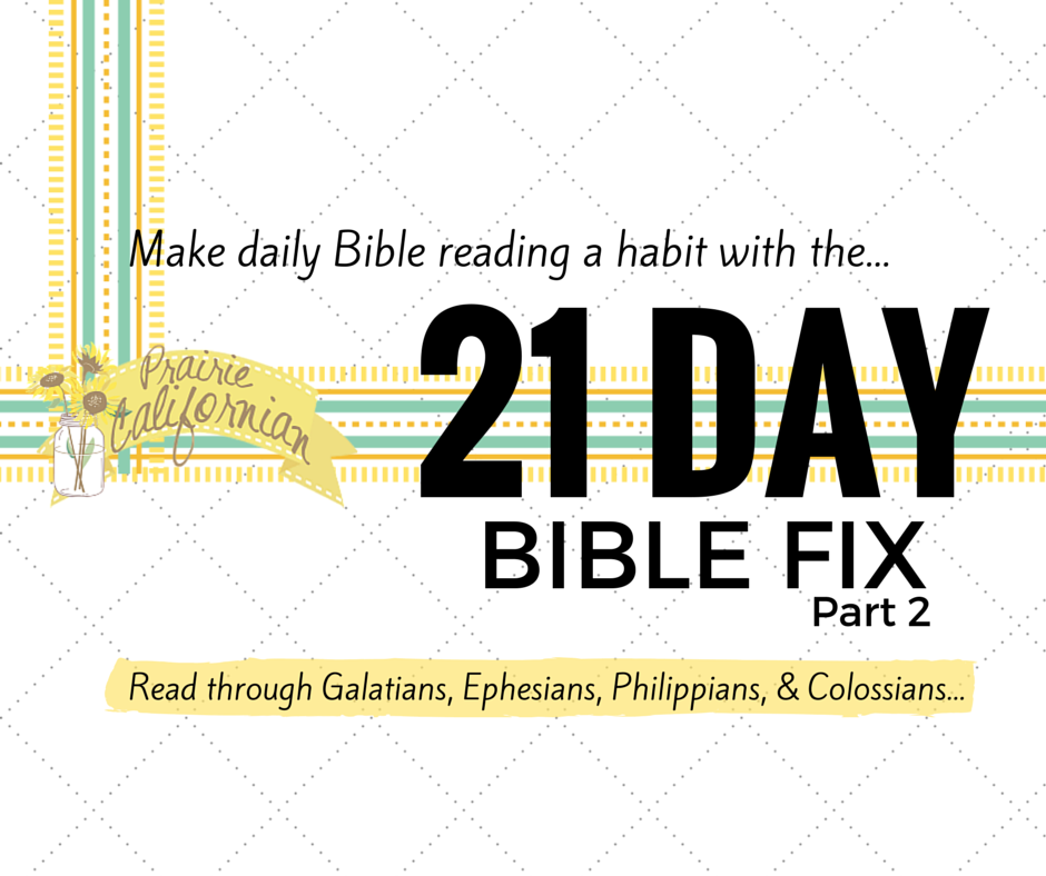 21 Day Bible Fix