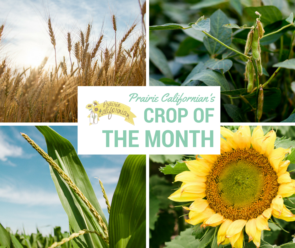 Crop of the Month