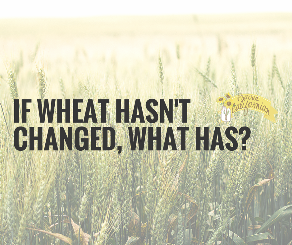 If wheat hasn't changed...What Has-
