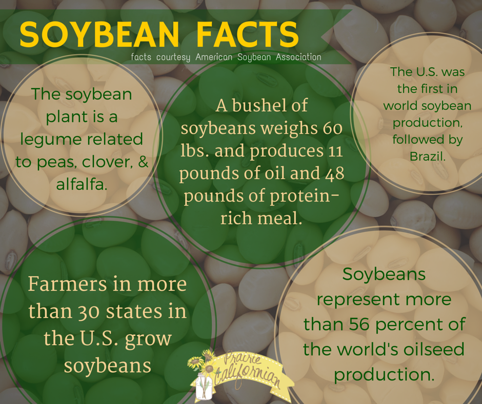 Soybean Facts