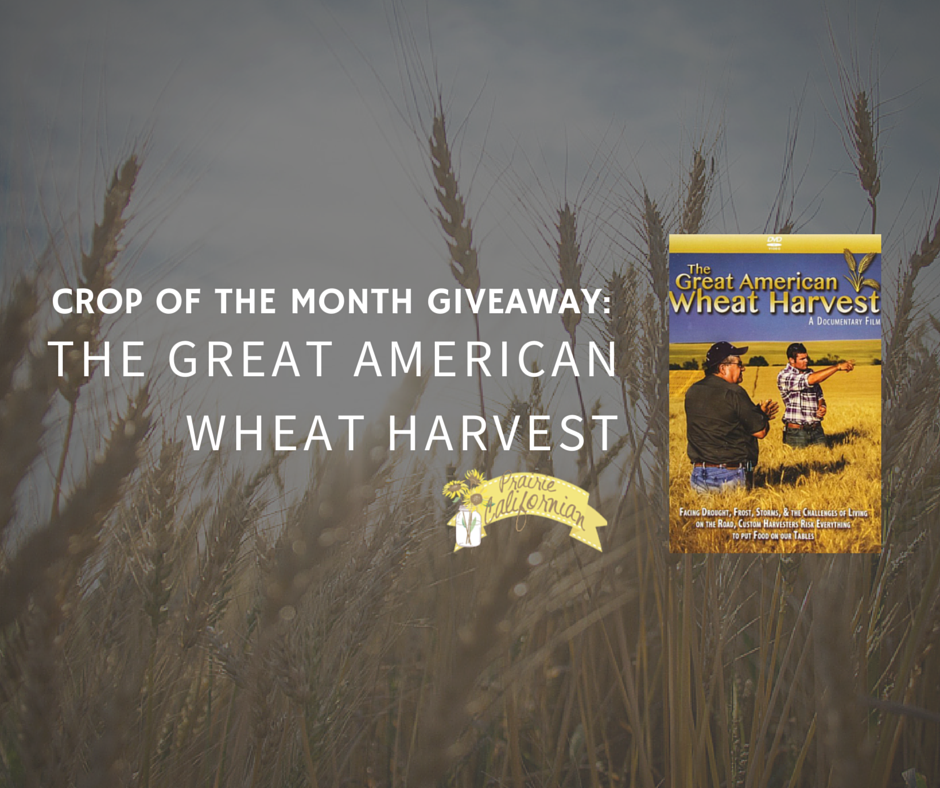 The Great American Wheat Harvest Giveaway