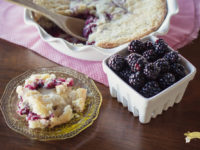 Blackberry Buckle-3