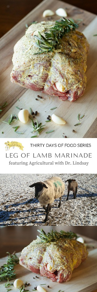 Leg of Lamb Marinade featuring Agricultural with Dr. Lindsay - Prairie Californian