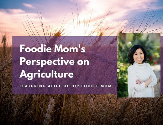 Foodie Mom's Perspective on Agriculture featuring Alice of Hip Foodie Mom - Prairie Californian