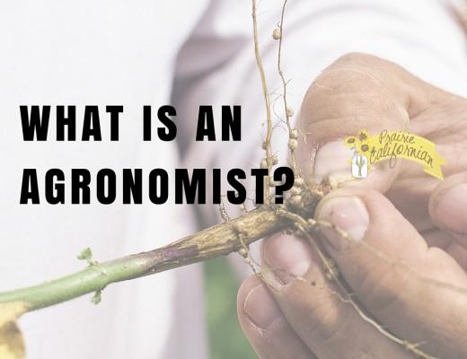 What is an agronomist- - Prairie Californian