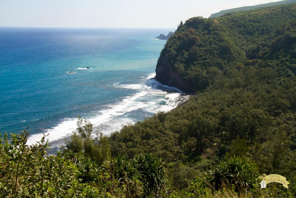 Big Island Hawaii-16