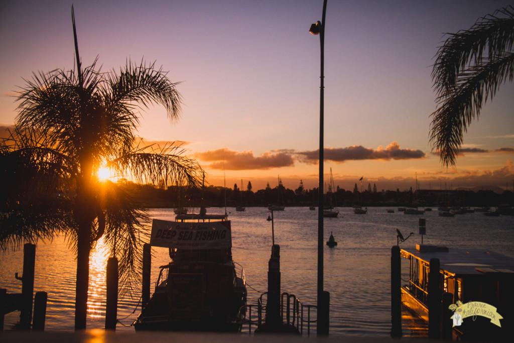 Coast & Gold Coast-1