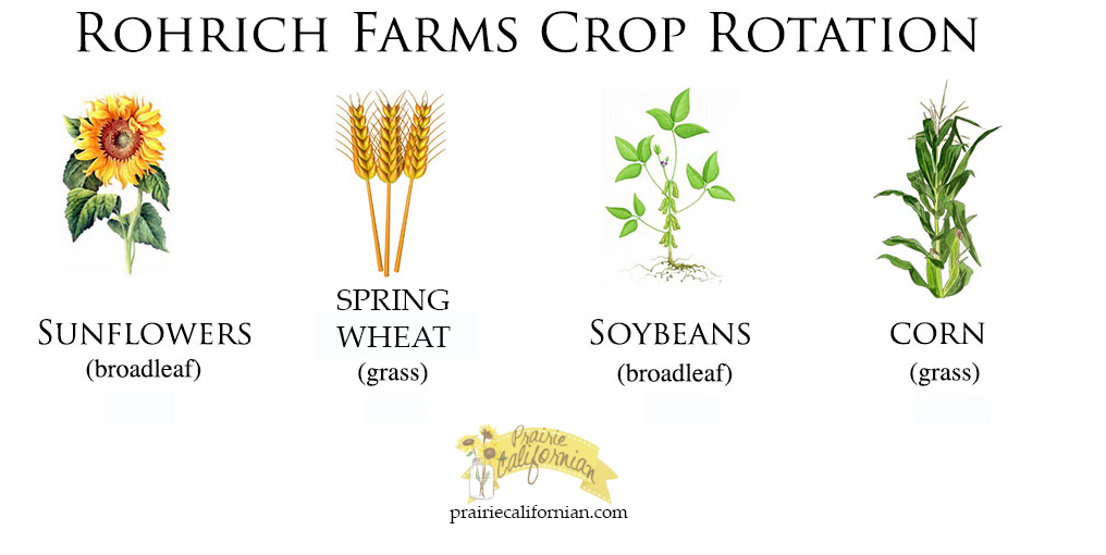 The Importance of Crop Rotation