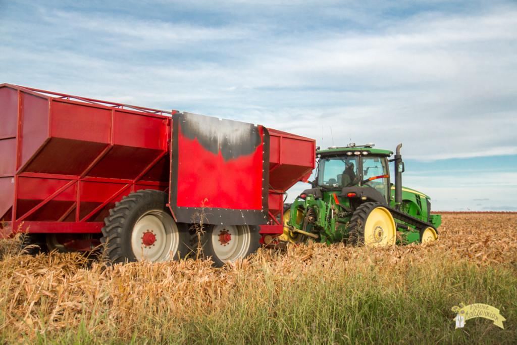 Inland & Farming-35