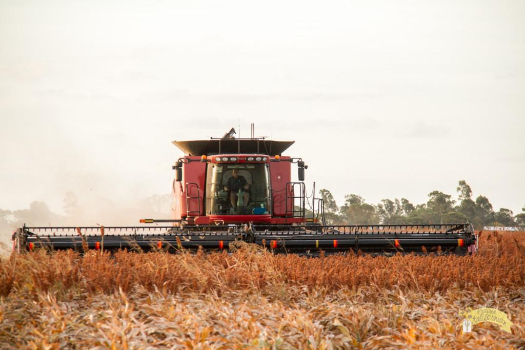 Inland & Farming-44