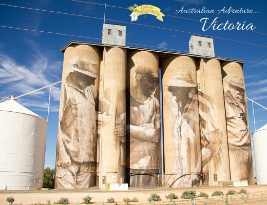 Australian Adventure Victoria - Prairie Californian