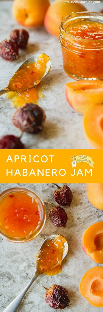 Apricot Habanero Jam - Prairie Californian