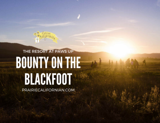 bounty-of-the-blackfoot-prairie-californian