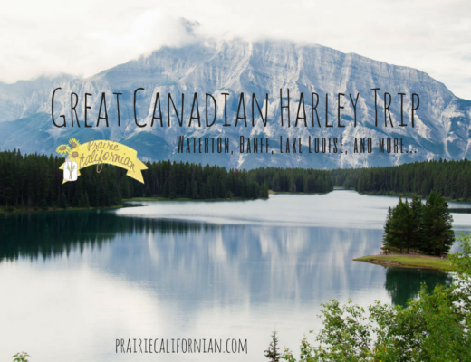 great-canadian-harley-trip-prairie-californian