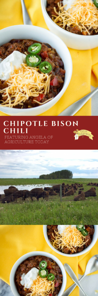 chipotle-bison-chili-prairie-californian