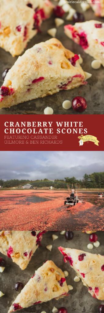 cranberry-white-chocolate-scones-prairie-californian