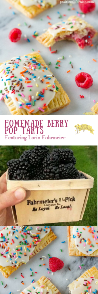 homemade-berry-pop-tarts-prairie-californian