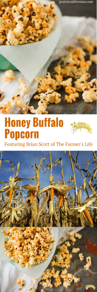 honey-buffalo-popcorn-prairie-californian
