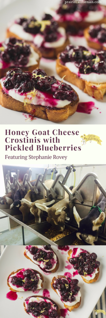 honey-goat-cheese-crostinis-with-pickled-blueberries-prairie-californian