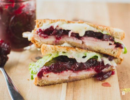 turkey-cranberry-melt-1