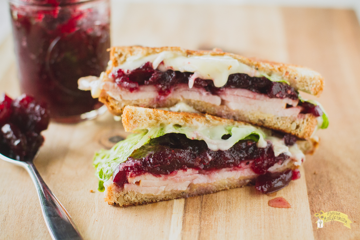 Turkey Cranberry Melt featuring Daniel French