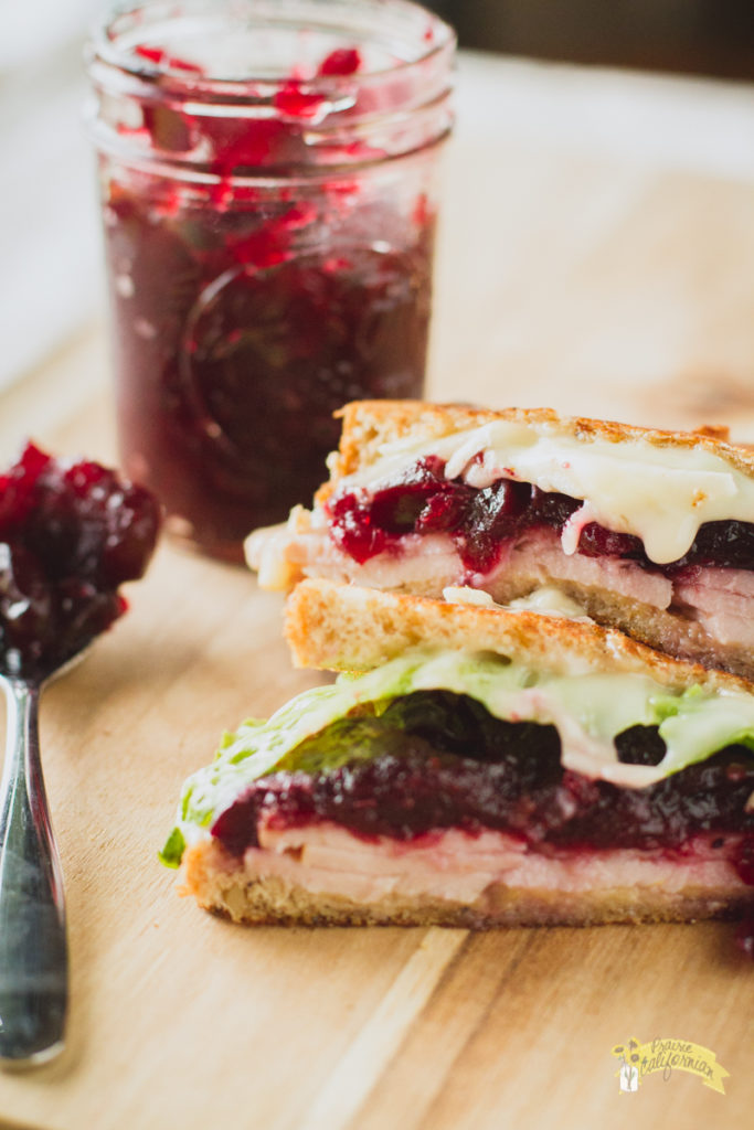 turkey-cranberry-melt-3