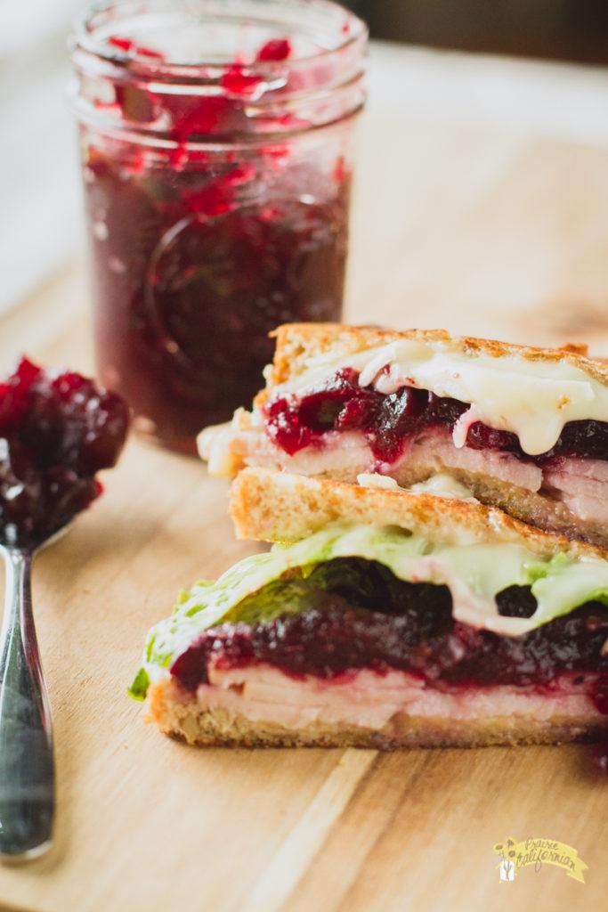 turkey-cranberry-melt-3