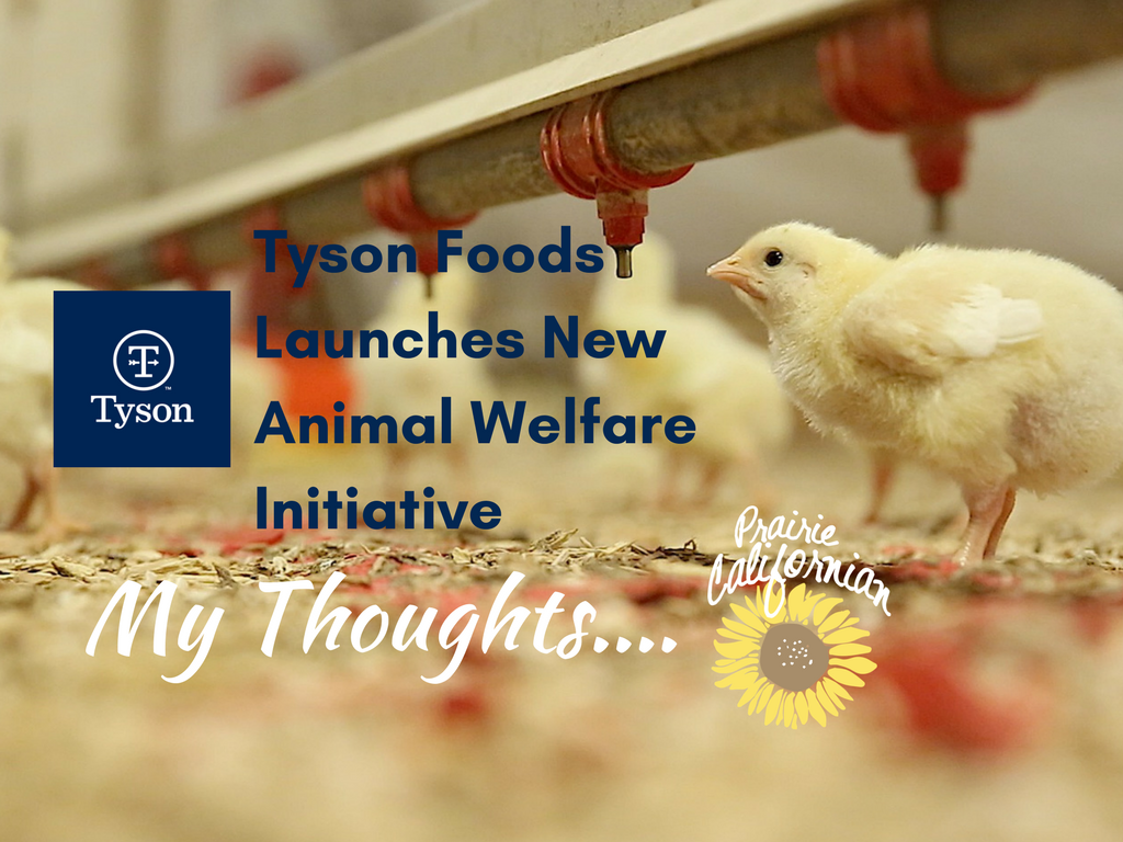 Tyson Foods Launches New Animal Welfare Initiative