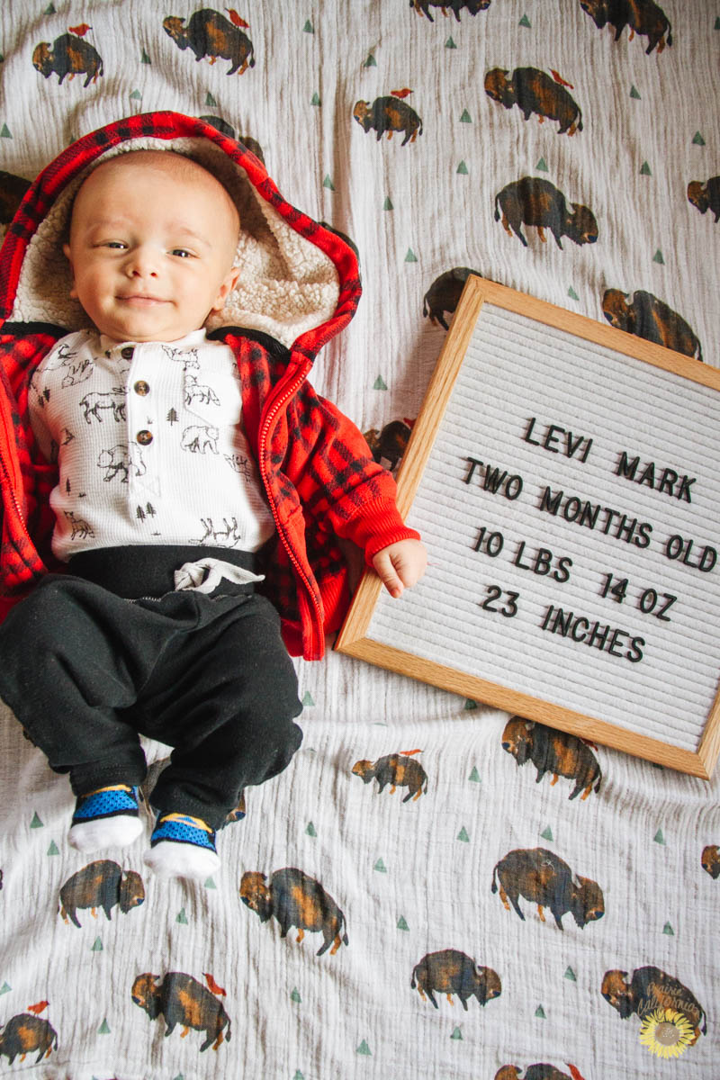Levi is Two Months