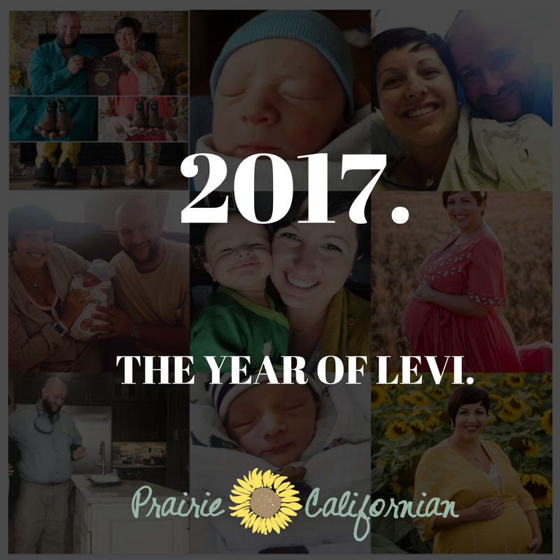 2017. The Year of Levi.